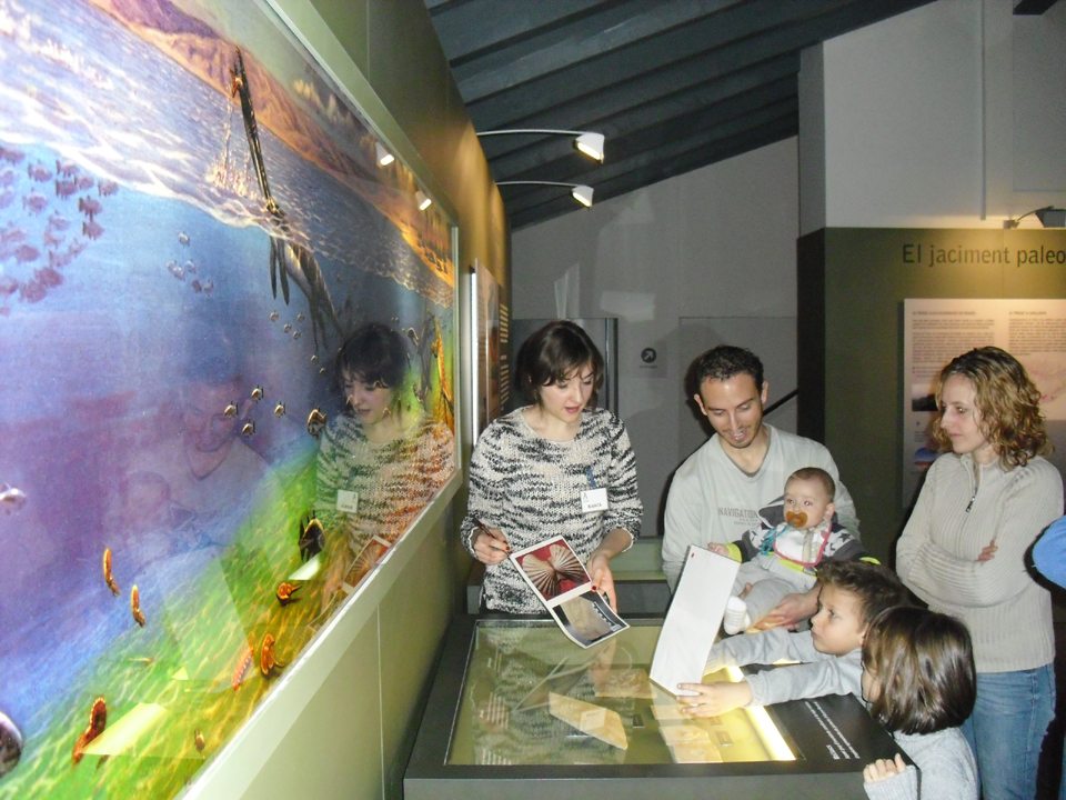 Alcover museu