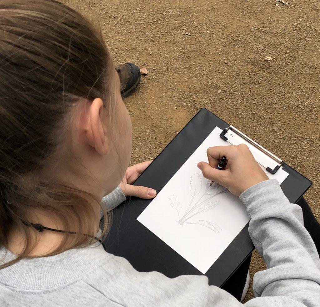 Dbuix científic al Parc Samà