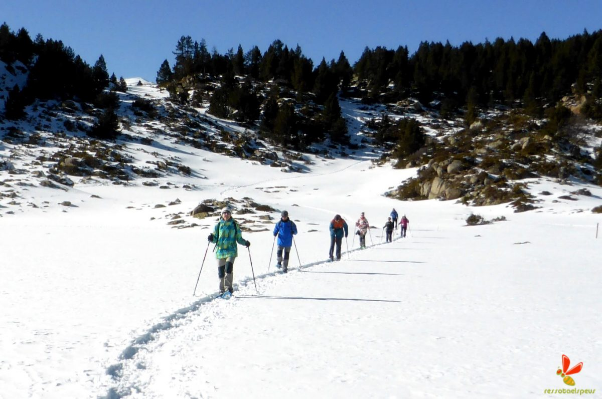Raquetes de neu al petit Canadà amb guia de muntanya